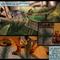 Lukunsky Grove page 1