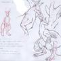 Kangaroo LOL by Kumakun4