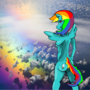 RAINBOW DASH by Kreyowitz