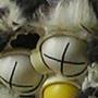 Furbyhead by FelixColgrave