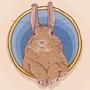 Figillu The Rabbit by BoMbLu