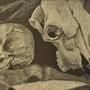 Skulls by MegaMelmo