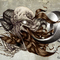 Hair, Bone and Metal