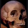 Skull by MinioN99