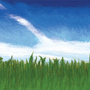 Grass N' Sky by BurntFoxProductions