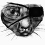 Cat pirate by Ukki