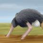 Ostrich Speedpaint by Kashi