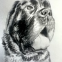 charcoal dog by CameronMc