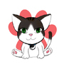 Chichi the Kitten