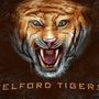 Telford Tigers by tlishman