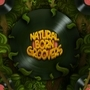 Natural Born Groovers by WackWacko