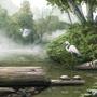 Crane Flight by ItoSaithWebb