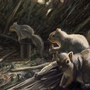 SQUIRRELS from El Dorado by ItoSaithWebb
