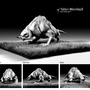 Sirian werebull by SmokingFrog