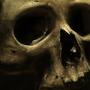 skull wip3 by NGXmusical