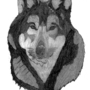 Wolf Portrait by Xander120