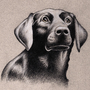 Black Lab Portrait by PXLFLX