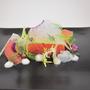 Salmon - Springtime Sashimi by Ironchefgriffin