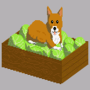 Corgis and Cabbage by BTomb