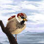 Sparrow by J-qb