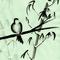 Sumi Bird