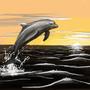 Dolphin! by Dumuzi