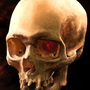 Skull Master Study by Xenzo