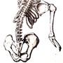 Skeleton by CrabbWalker