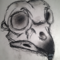 Charcoal Owl Skull