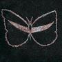 Moth by Belosus34