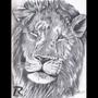 Pride by Rhyakk