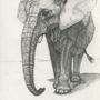 elephant by spanishartist