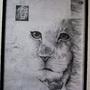 It's just a Lion Cub - Large by NoConceptChris