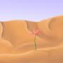 Mi florecilla del desierto by bkesch