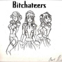 Bitchateers by TheManofSteal13