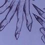 Sketchbook art #2: Hands by BoxFullofZombies