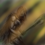 hunter by TrojanMan87