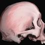 Skull by ginemginem