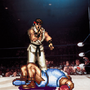 Ali / Ryu Knockout by KlassicKelvin