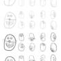 Cartoon Head Test 01 by VigorousJammer