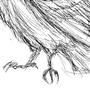 Raven by annalp