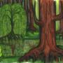 Forest by bkesch