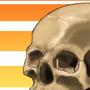 Summer Skull by ZestyNoodles