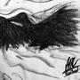 Blackbird by GabrielNovakStudios