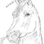Quick drawing of a horse by meytal3