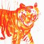 Tiger by KattyC