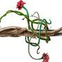 Rose Hilted Rapier by Melangle