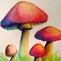 Watercolor Mushrooms by doublemaximus
