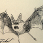 #041_Zubat by Manguinha