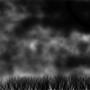"""Stormy Night"" by MyrtleX545"